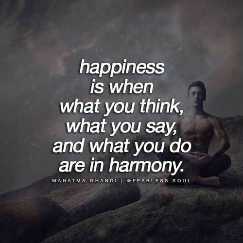 happiness is the only worthwhile goal