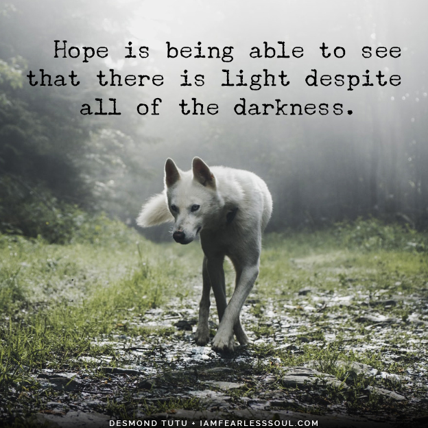 """Hope is being able to see that there is light despite all of the darkness."" Desmond Tutu It Is During Our Darkest Moments That We Must Focus To See The Light"